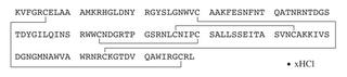 リゾチーム構造式