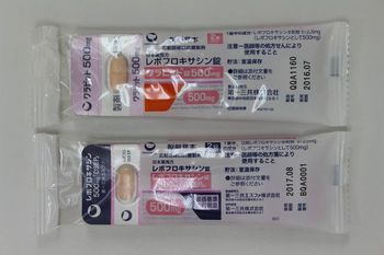 レボフロキサシン錠500�r「DSEP」