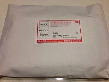 ポケット医薬品集2013